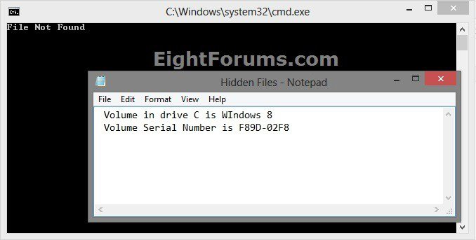 Hidden_Files_Not_Found.jpg