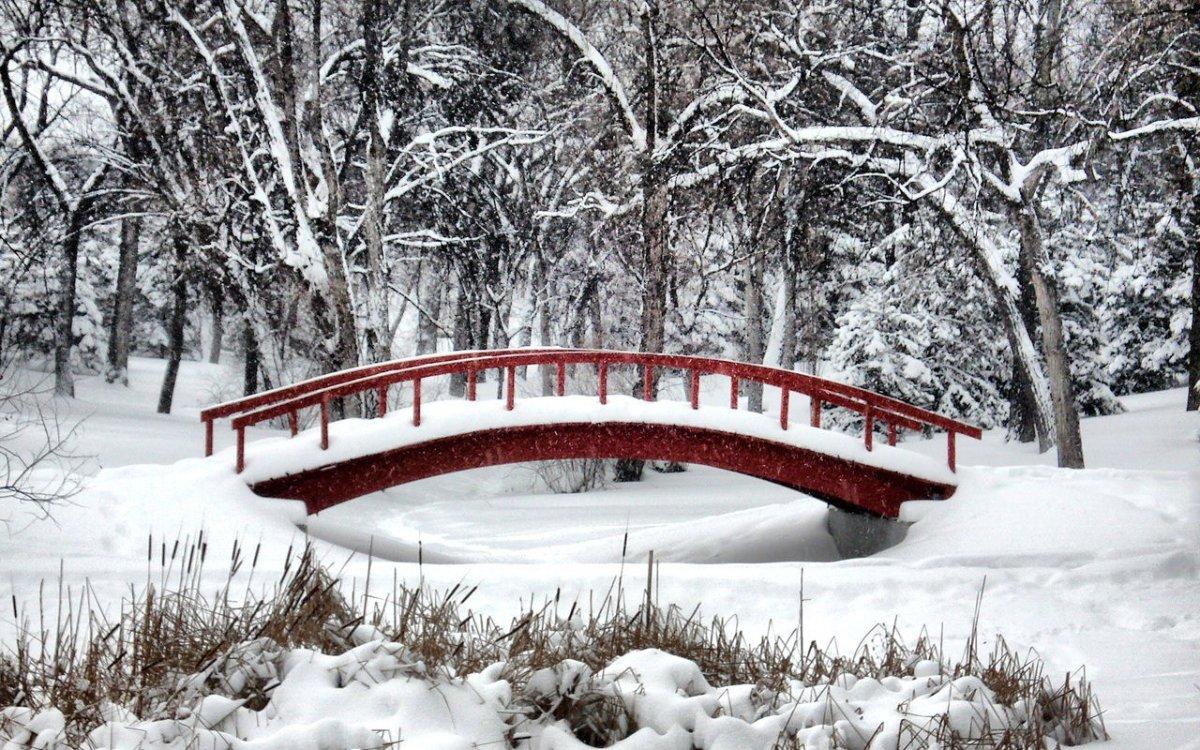 Winter_Wonderland_by_midnightstouch[2].jpg