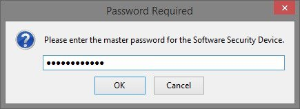 Master_Password_Required.jpg