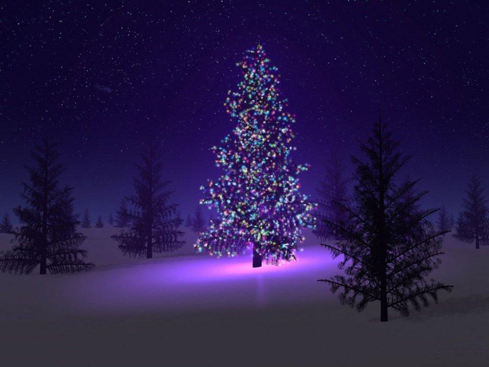 beautiful-christmas-tree.jpg