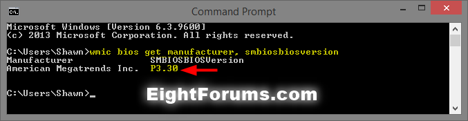 BIOS_version_command-1.png