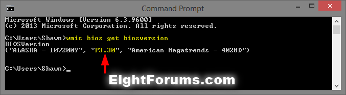 BIOS_version_command-2.png