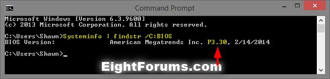 BIOS_version_command-3.png