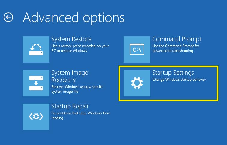 Advanced options.png